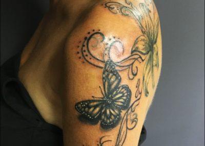 motýl. (2)
